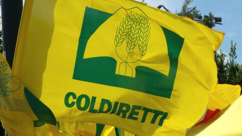 Coldiretti Calabria: le opportunità fiscali di fine anno per le imprese agricole