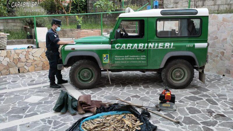 Pesca di frodo con generatore di corrente. Tre persone denunciate dai Carabinieri Forestale
