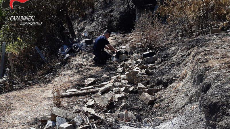 Denunciato il responsabile del vasto incendio che ha interessato il territorio di Albidona a fine agosto