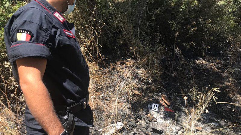 Terravecchia: occupazione e pascolo abusivo su terreni bruciati, abuso d'atti d'ufficio